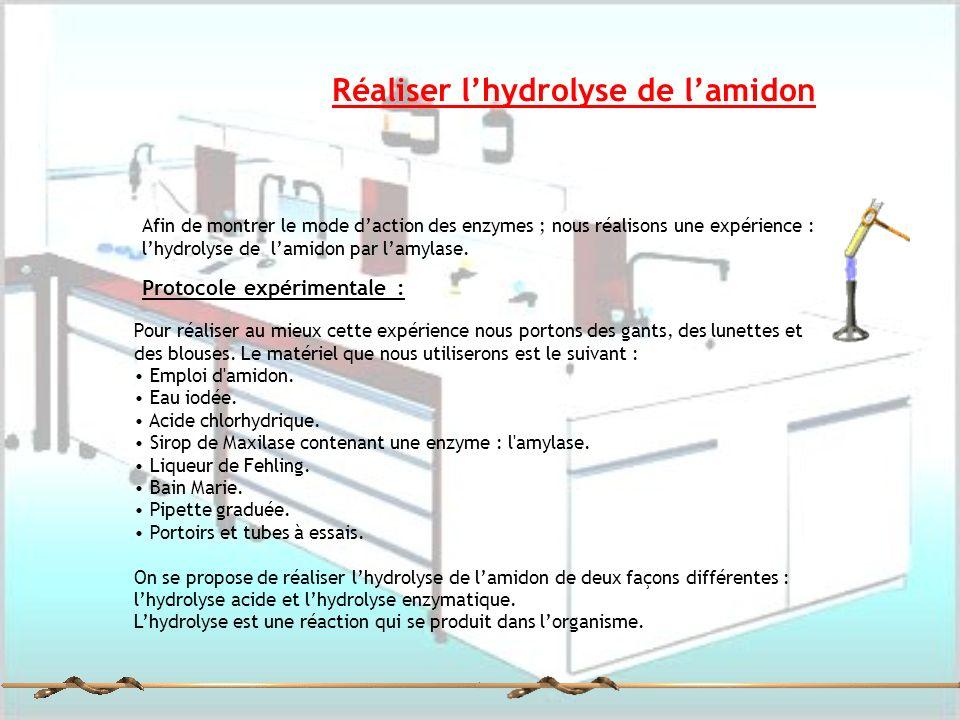 Réaliser l'hydrolyse de l'amidon