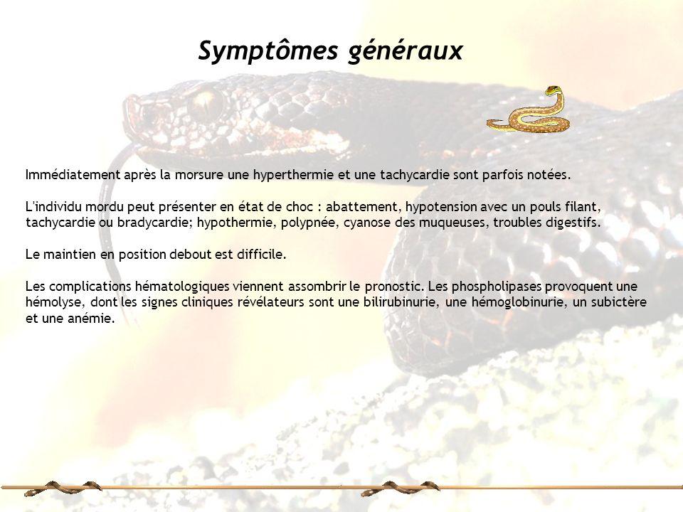 Symptômes généraux Immédiatement après la morsure une hyperthermie et une tachycardie sont parfois notées.