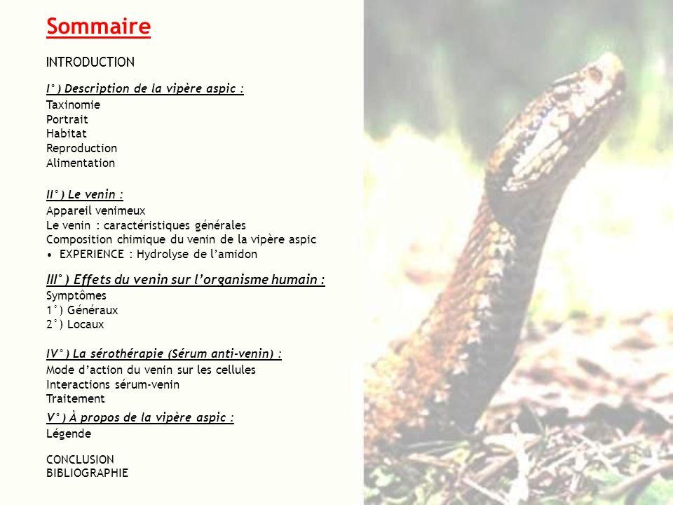 Sommaire INTRODUCTION III°) Effets du venin sur l'organisme humain :
