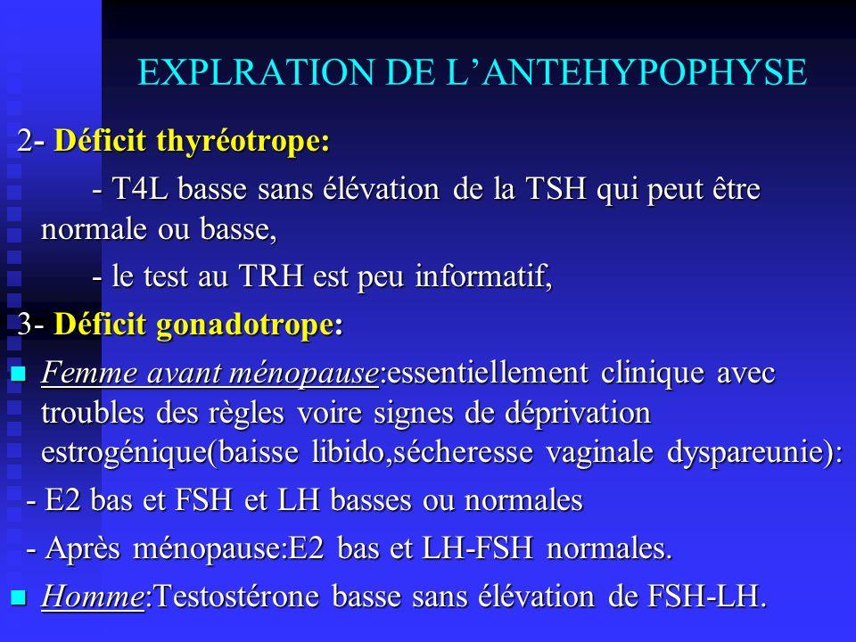 EXPLRATION DE L'ANTEHYPOPHYSE
