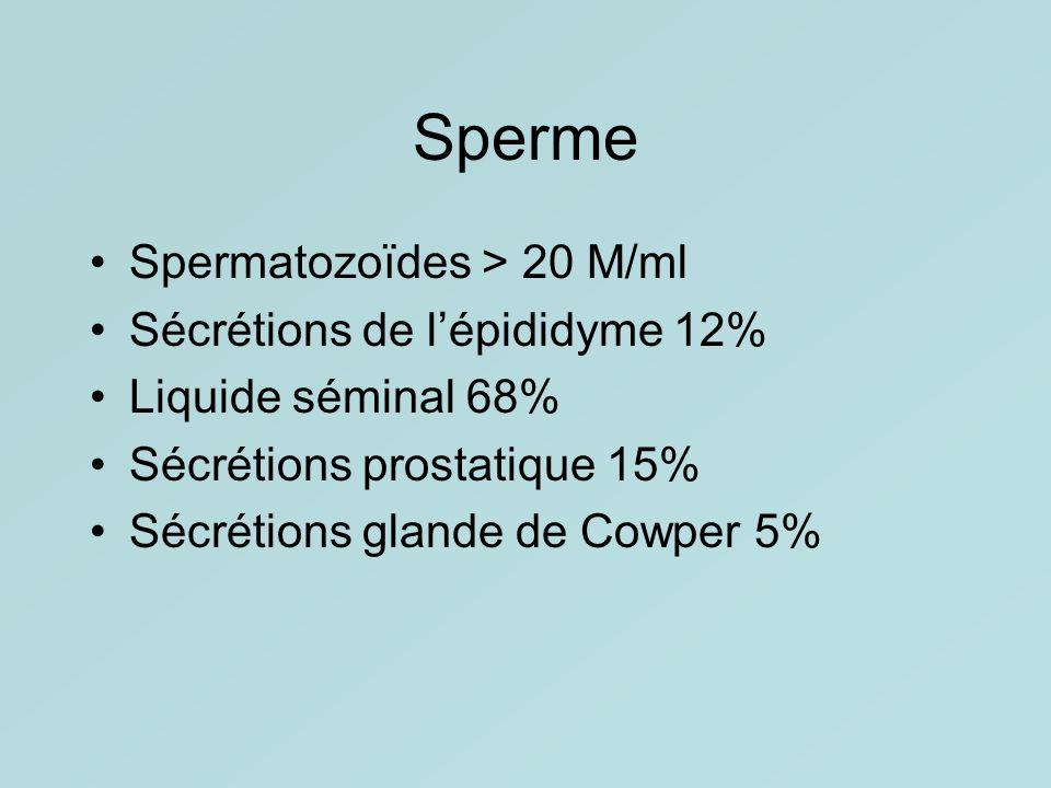 Sperme Spermatozoïdes > 20 M/ml Sécrétions de l'épididyme 12%