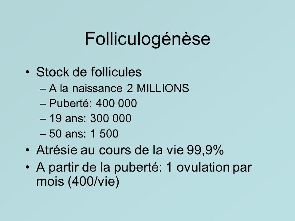 Folliculogénèse Stock de follicules Atrésie au cours de la vie 99,9%