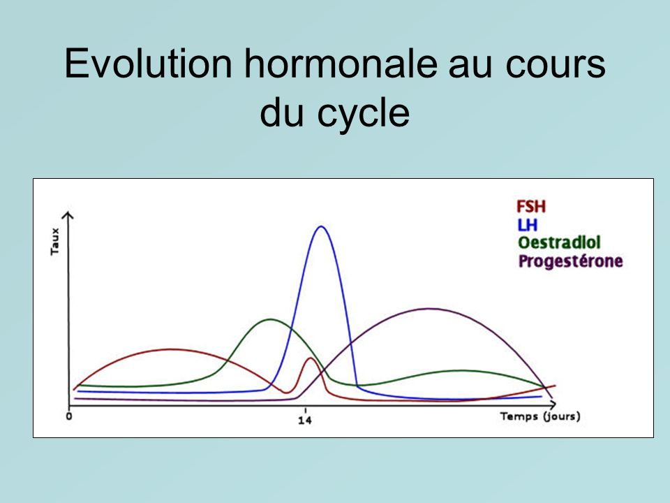 Evolution hormonale au cours du cycle