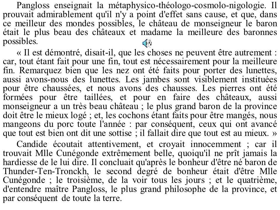 Pangloss enseignait la métaphysico-théologo-cosmolo-nigologie
