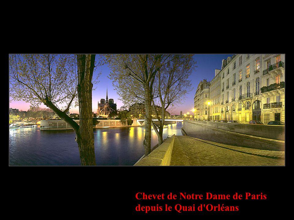 Chevet de Notre Dame de Paris depuis le Quai d Orléans
