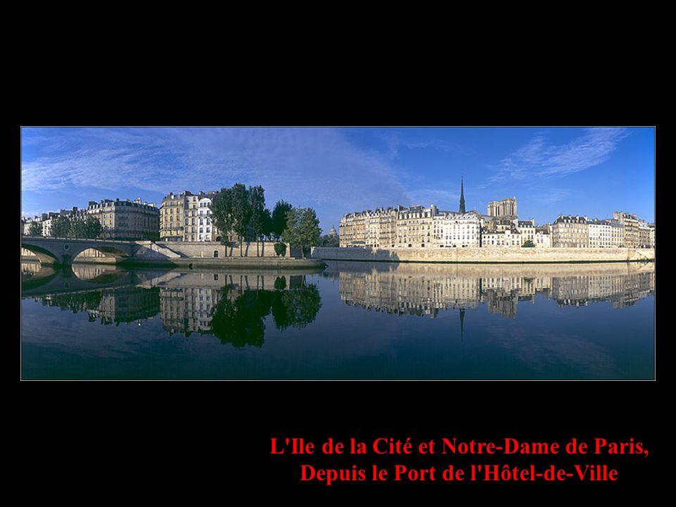 L Ile de la Cité et Notre-Dame de Paris, Depuis le Port de l Hôtel-de-Ville