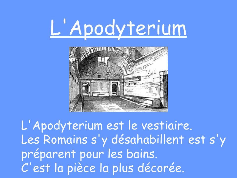 L Apodyterium L Apodyterium est le vestiaire.