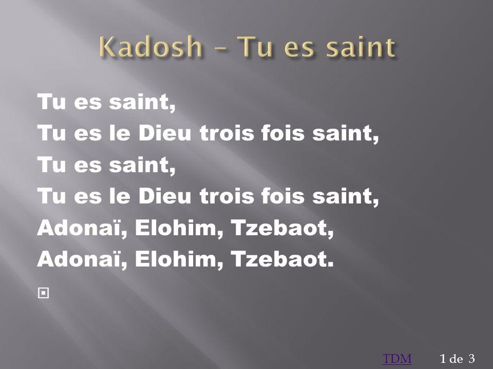 Kadosh – Tu es saint Tu es saint, Tu es le Dieu trois fois saint,