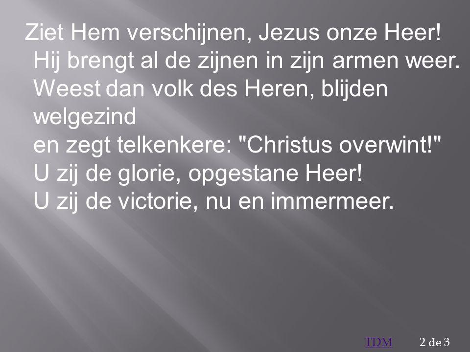 Ziet Hem verschijnen, Jezus onze Heer