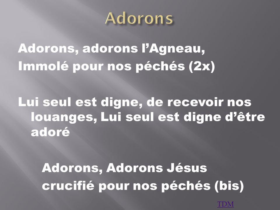 Adorons Adorons, adorons l'Agneau, Immolé pour nos péchés (2x)