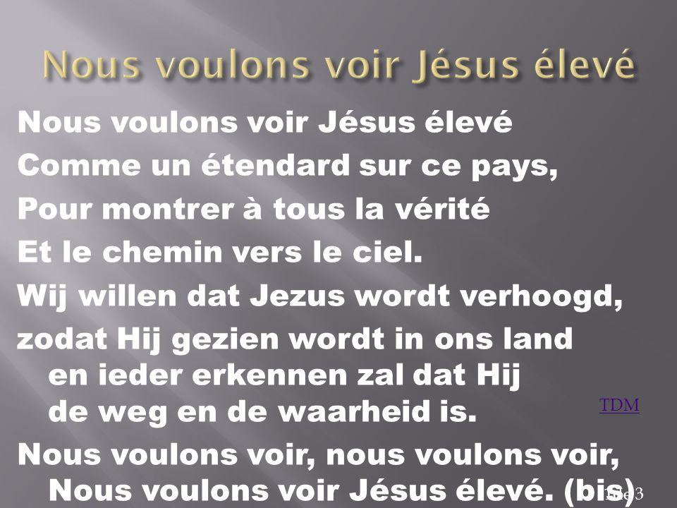 Nous voulons voir Jésus élevé
