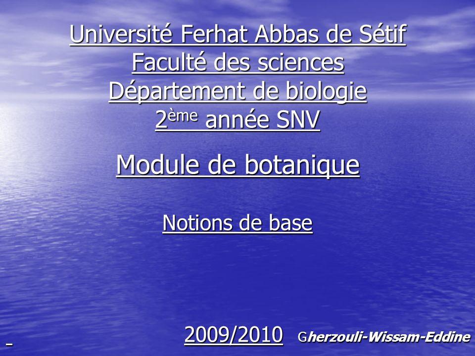 Module de botanique Notions de base 2009/2010 Gherzouli-Wissam-Eddine