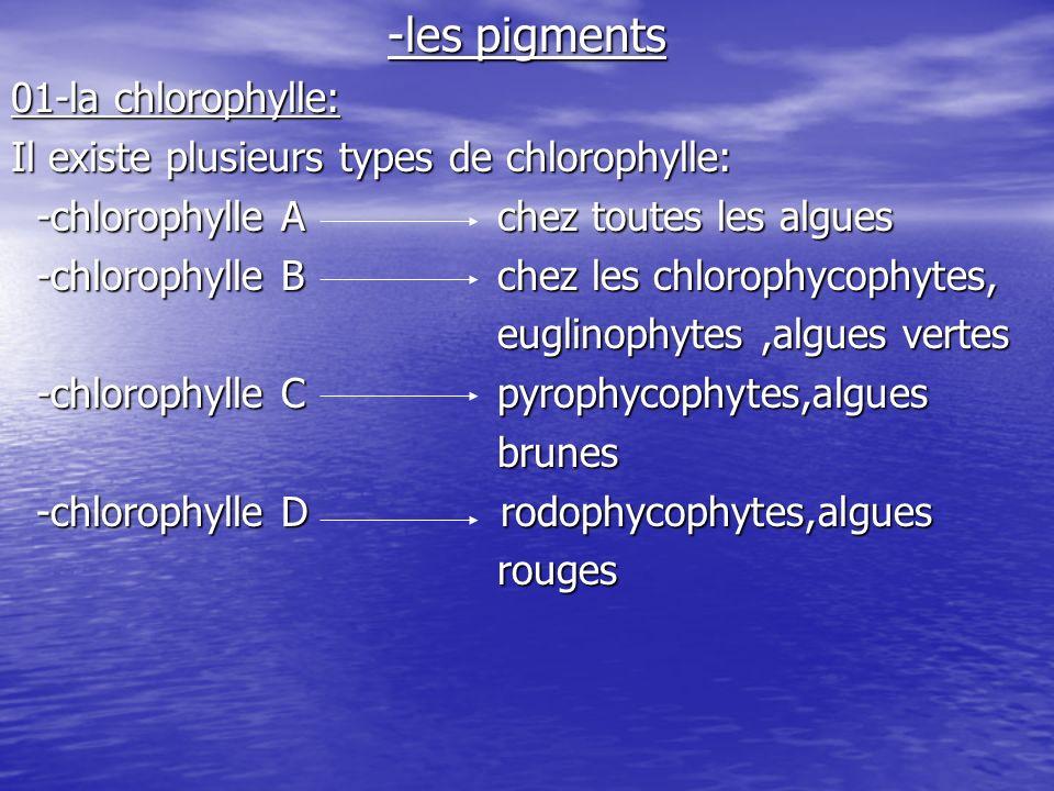 -les pigments 01-la chlorophylle: