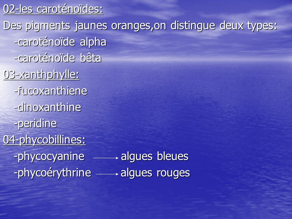 02-les caroténoïdes: Des pigments jaunes oranges,on distingue deux types: -caroténoïde alpha. -caroténoïde bêta.