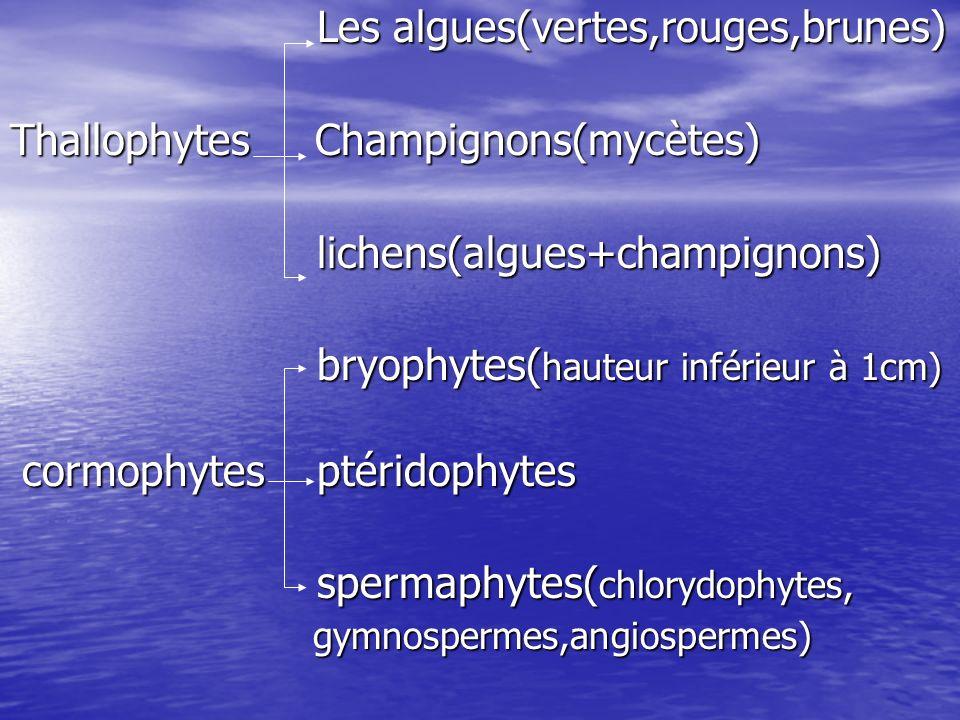 Les algues(vertes,rouges,brunes) Thallophytes Champignons(mycètes)