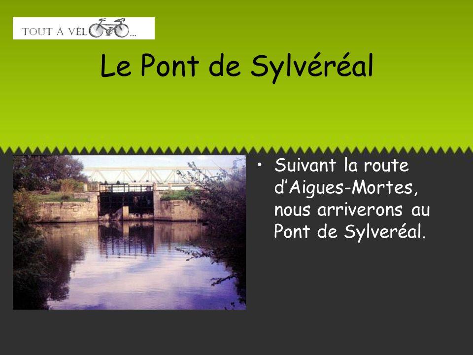 Le Pont de Sylvéréal Suivant la route d'Aigues-Mortes, nous arriverons au Pont de Sylveréal.