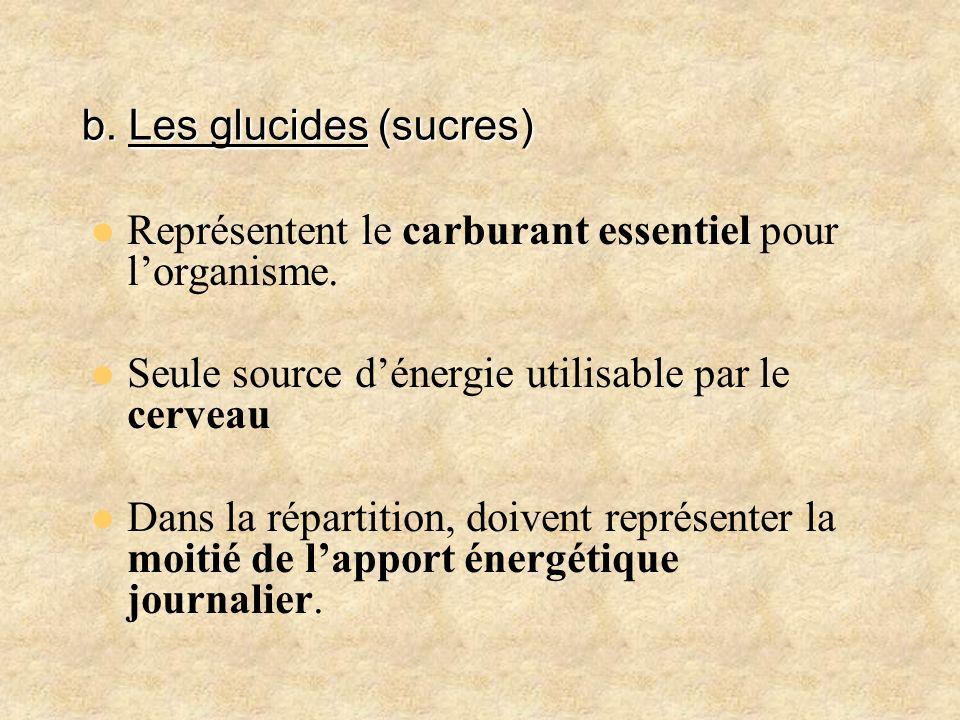 b. Les glucides (sucres)