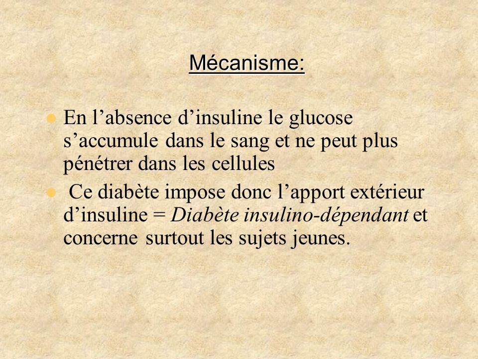 Mécanisme:En l'absence d'insuline le glucose s'accumule dans le sang et ne peut plus pénétrer dans les cellules.