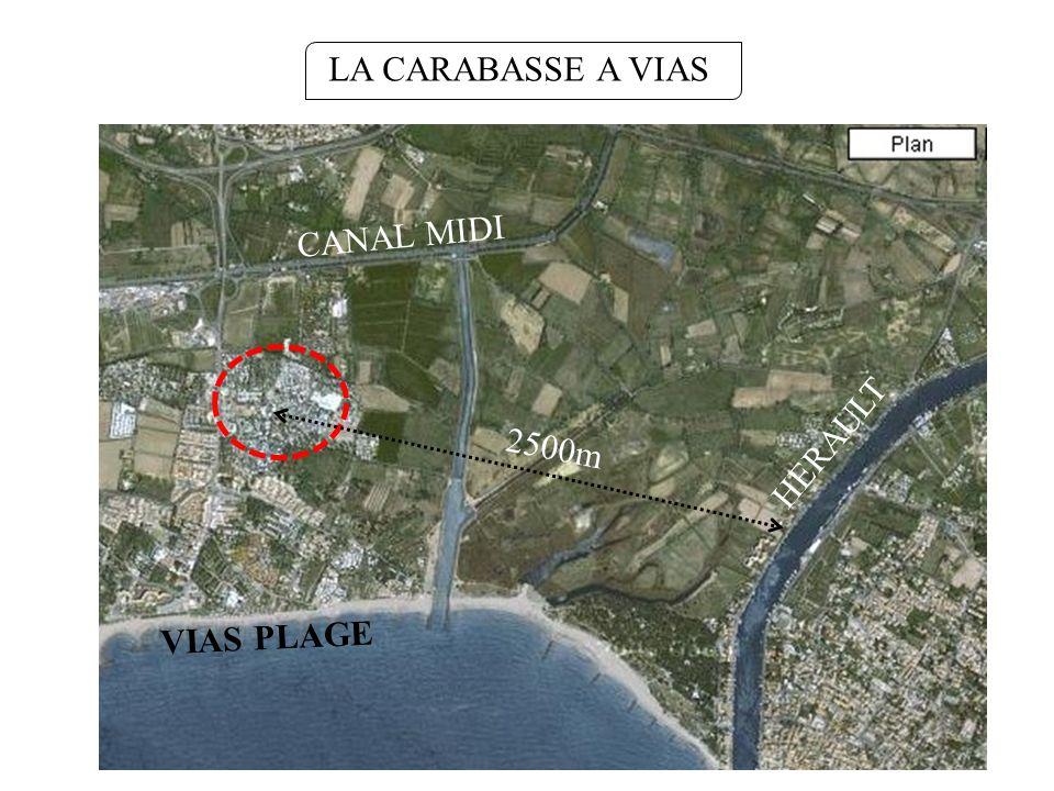 LA CARABASSE A VIAS CANAL MIDI 2500m HERAULT VIAS PLAGE