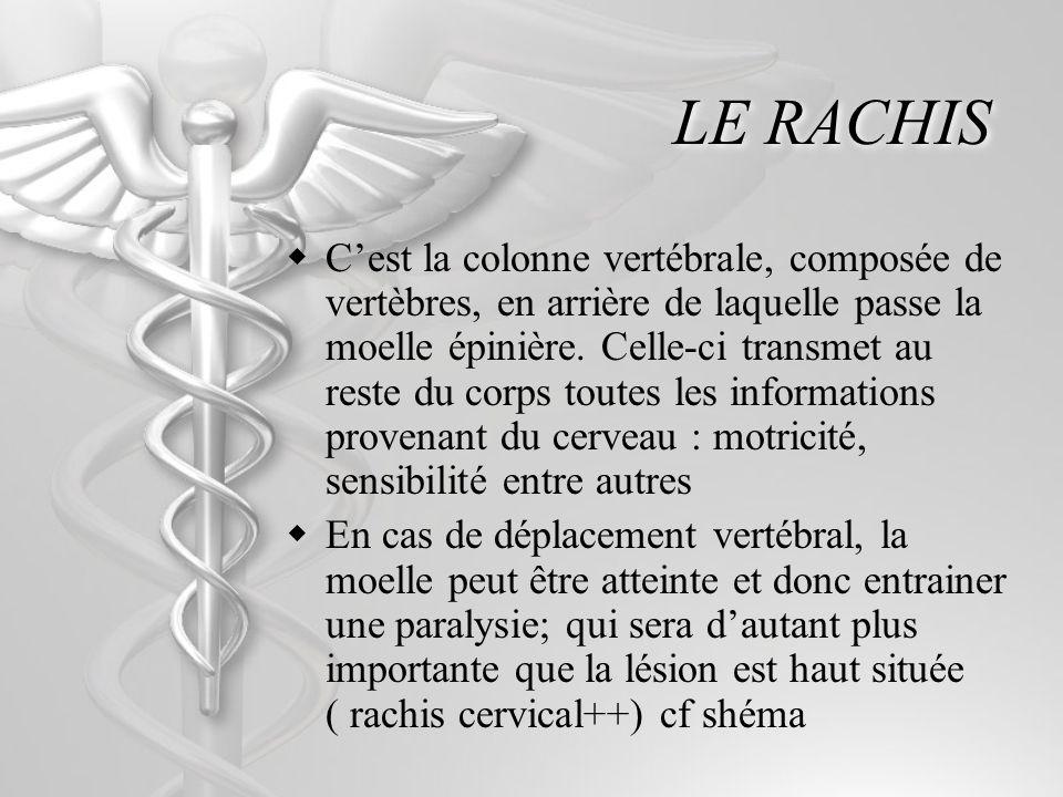 LE RACHIS