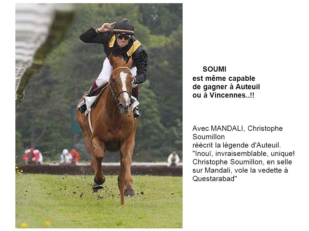 SOUMI est même capable de gagner à Auteuil ou à Vincennes..!!