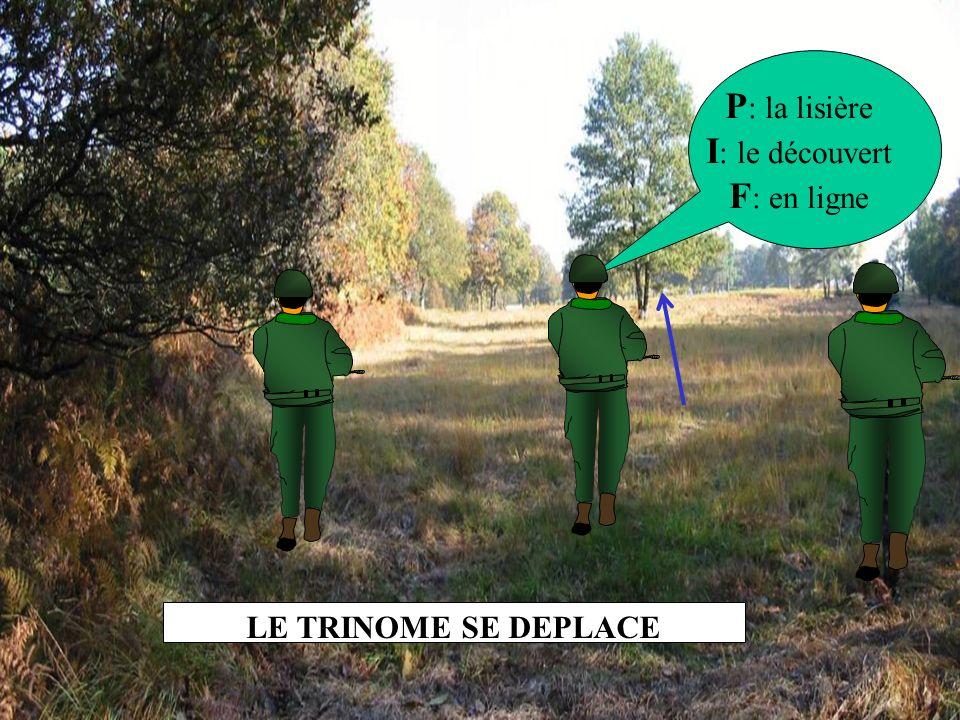 P: la lisière I: le découvert F: en ligne LE TRINOME SE DEPLACE