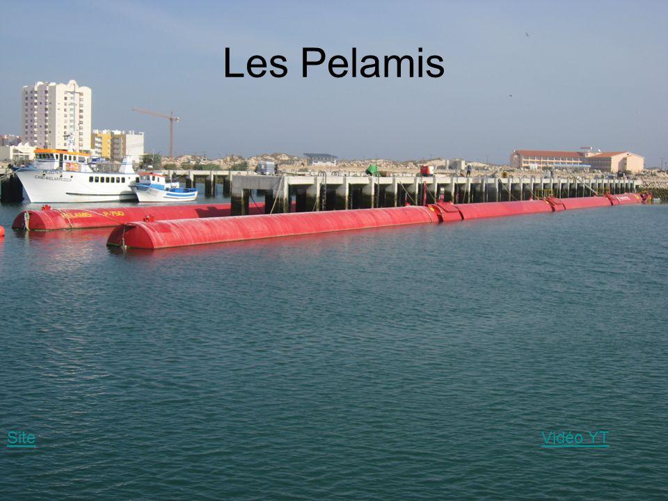 Les Pelamis Site Vidéo YT