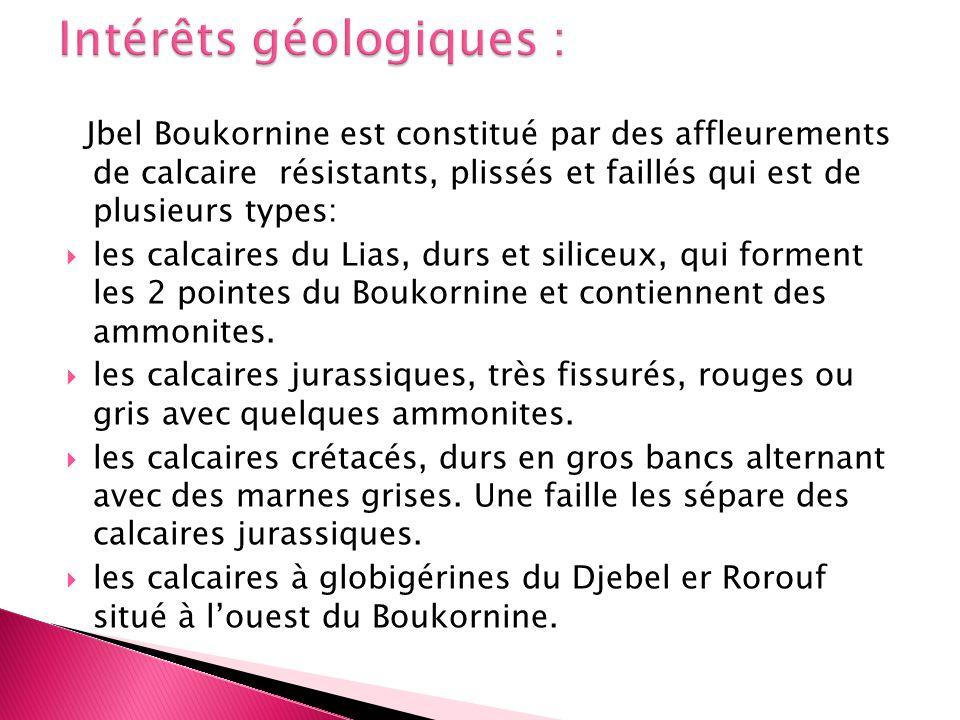 Intérêts géologiques :