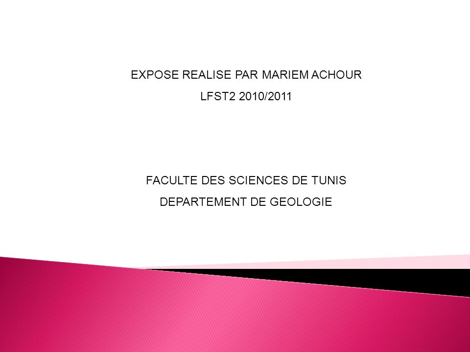EXPOSE REALISE PAR MARIEM ACHOUR LFST2 2010/2011
