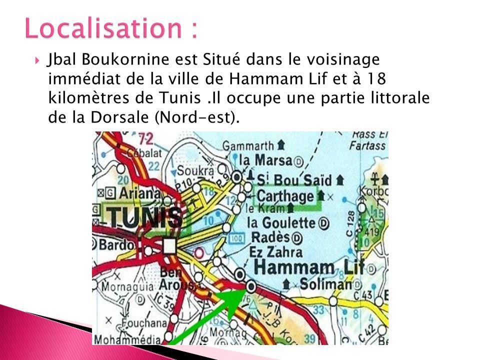 Localisation :