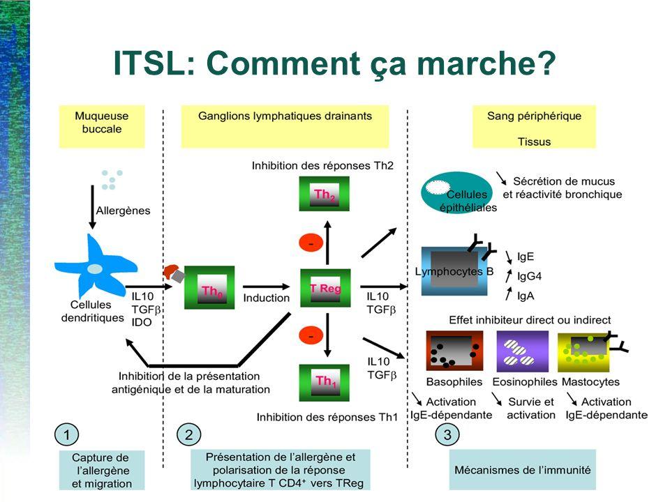 ITSL: Comment ça marche