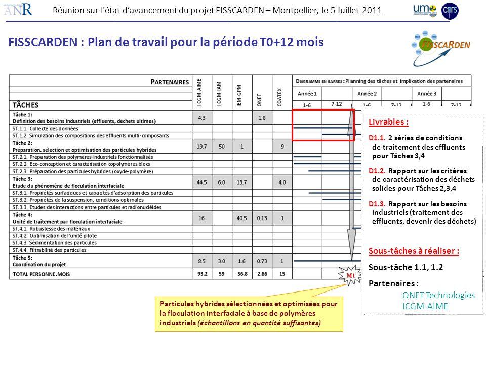 FISSCARDEN : Plan de travail pour la période T0+12 mois
