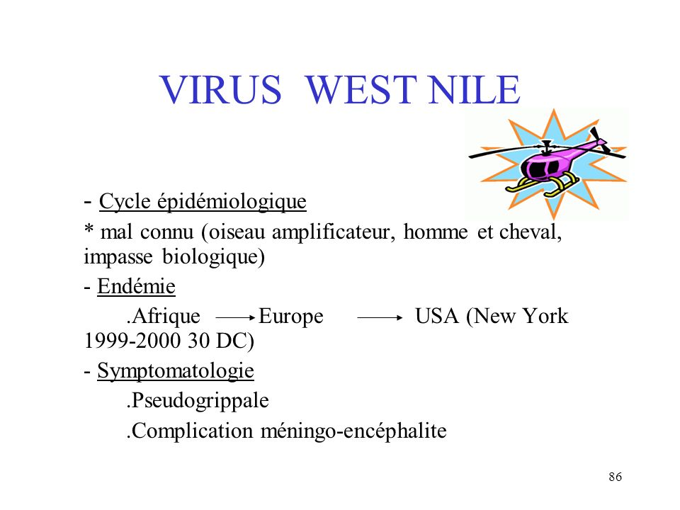 VIRUS WEST NILE - Cycle épidémiologique