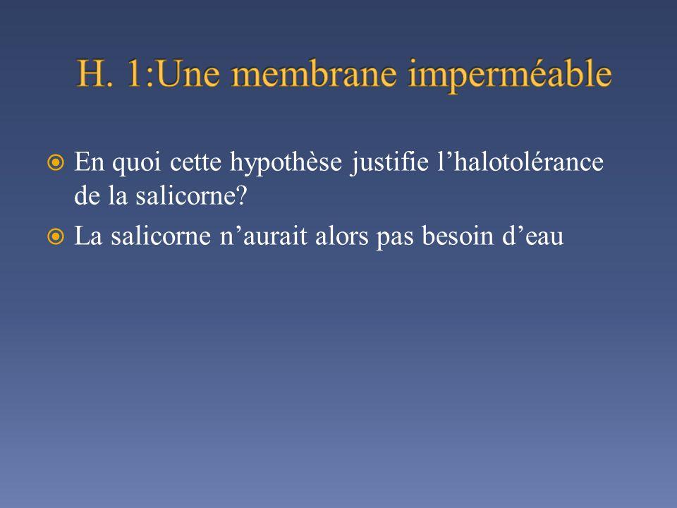 H. 1:Une membrane imperméable