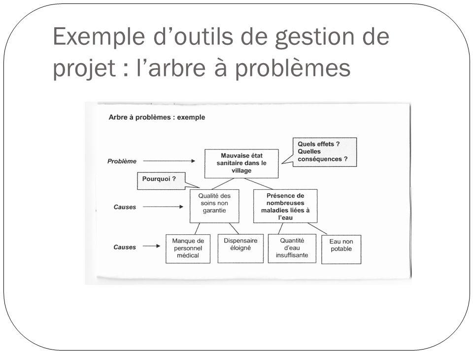 Exemple d'outils de gestion de projet : l'arbre à problèmes