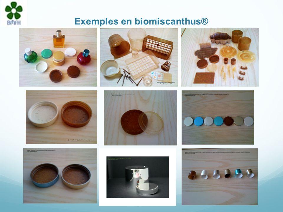 Exemples en biomiscanthus®