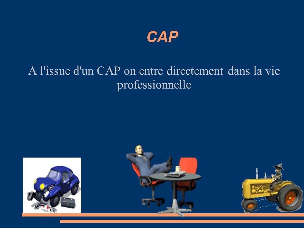 A l issue d un CAP on entre directement dans la vie professionnelle