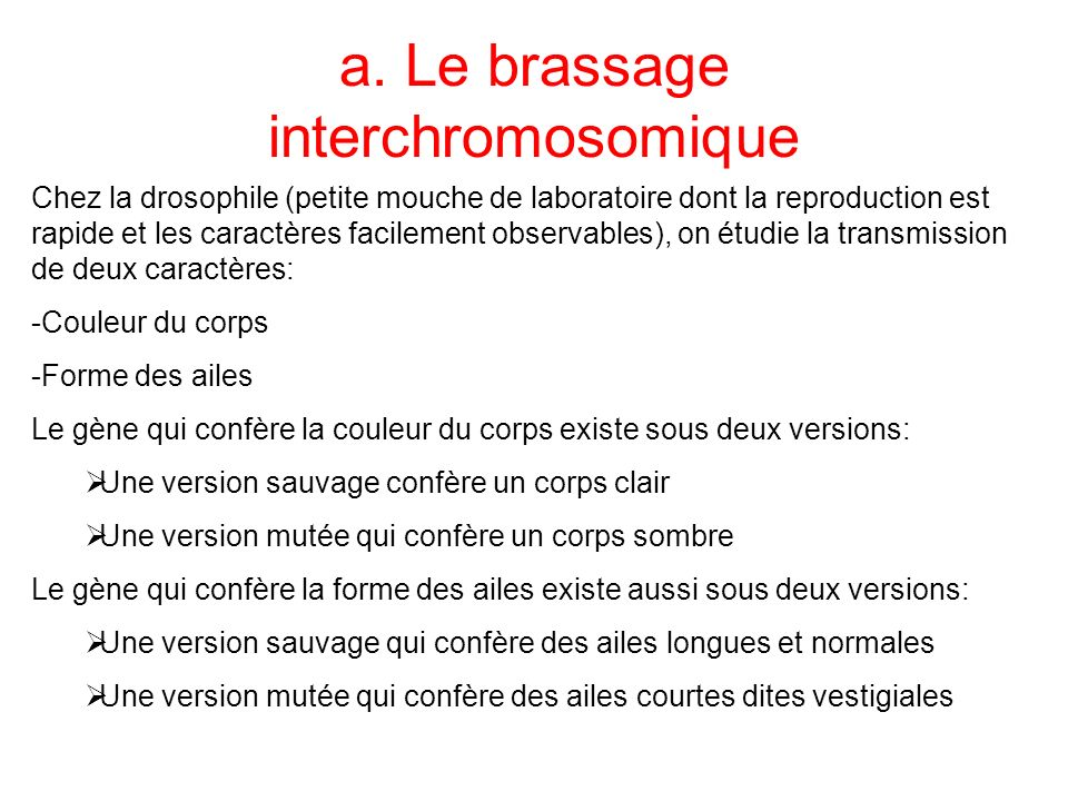 a. Le brassage interchromosomique