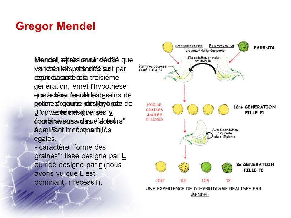 Gregor Mendel Mendel sélectionne deux variétés de pois différant par deux caractères: