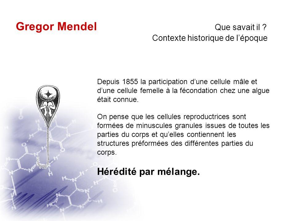 Gregor Mendel Que savait il
