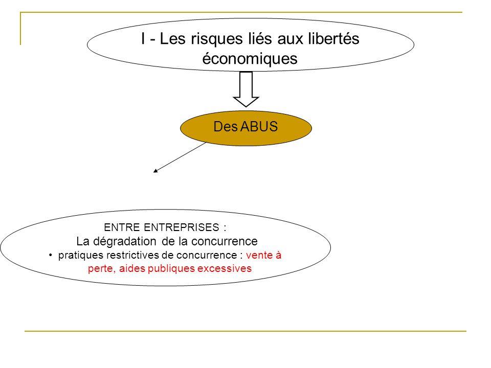 I - Les risques liés aux libertés économiques