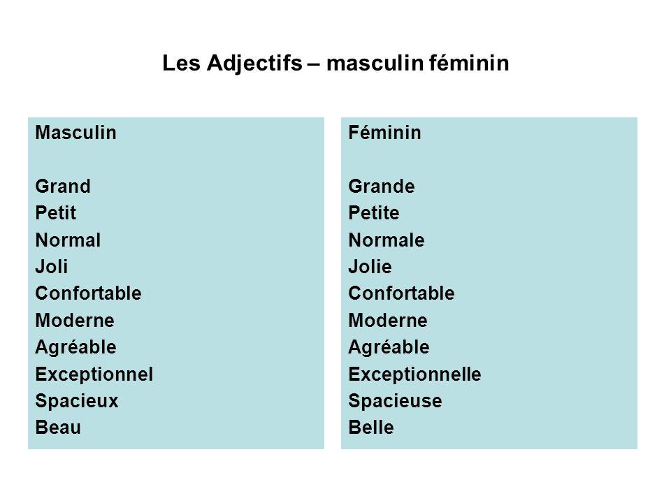 Les Adjectifs – masculin féminin