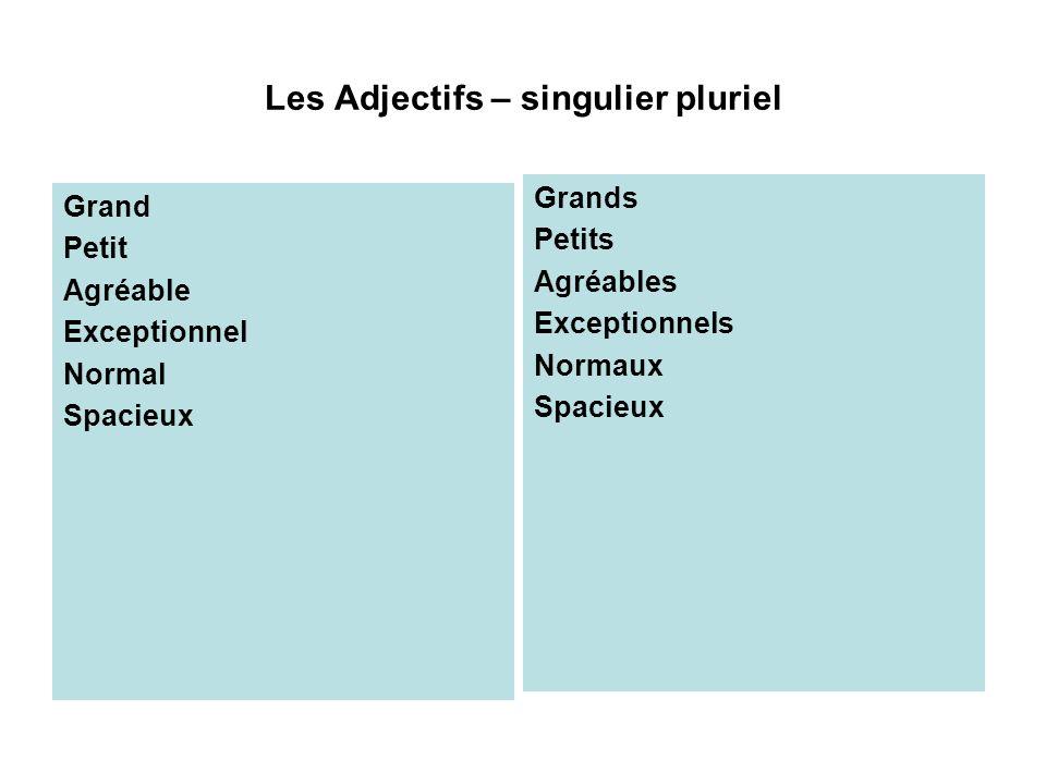 Les Adjectifs – singulier pluriel