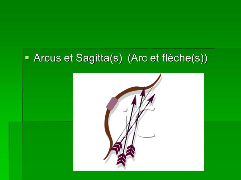 Arcus et Sagitta(s) (Arc et flèche(s))