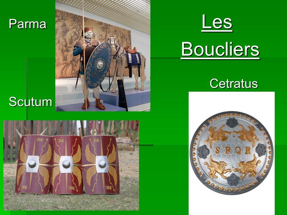 Parma Les Boucliers Cetratus.