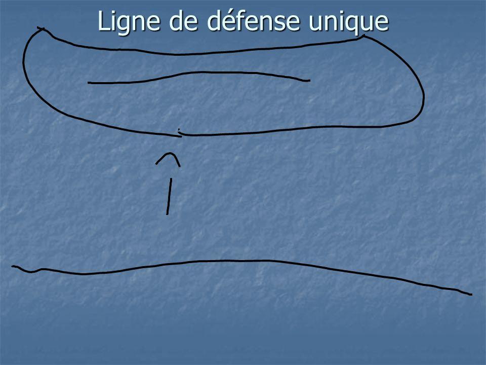 Ligne de défense unique