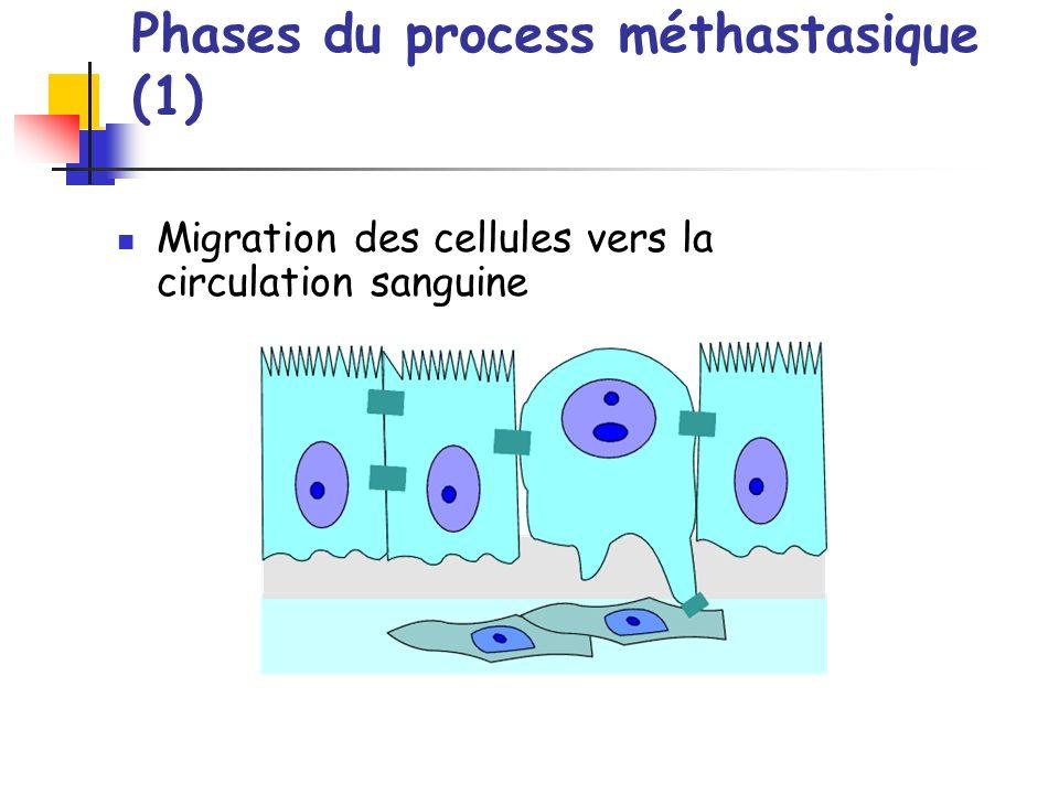Phases du process méthastasique (1)