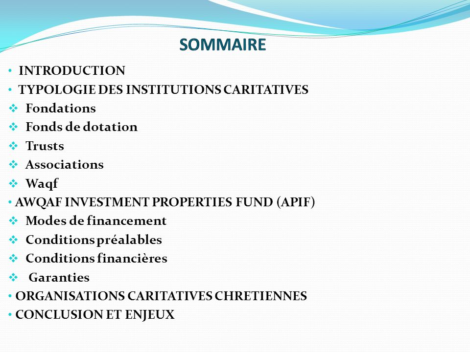 SOMMAIRE INTRODUCTION TYPOLOGIE DES INSTITUTIONS CARITATIVES