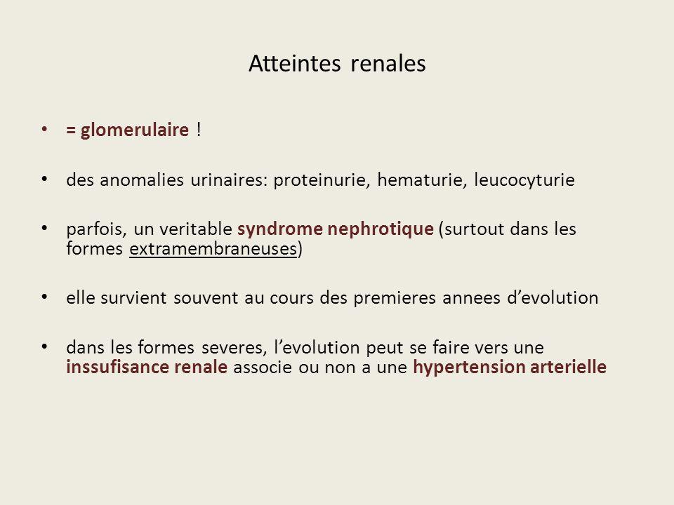 Atteintes renales = glomerulaire !