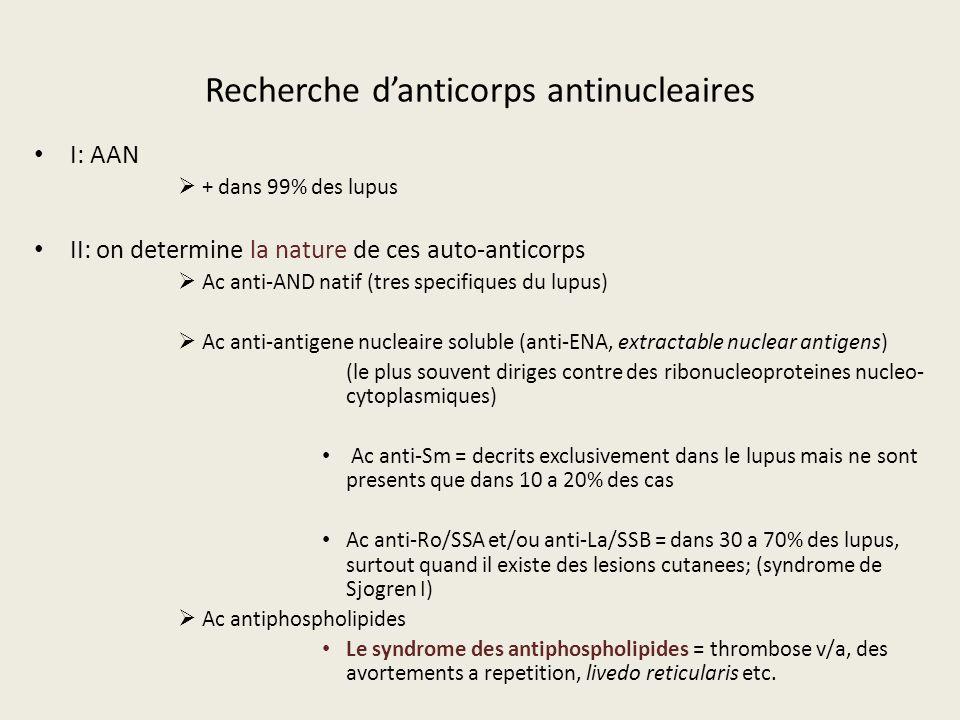 Recherche d'anticorps antinucleaires